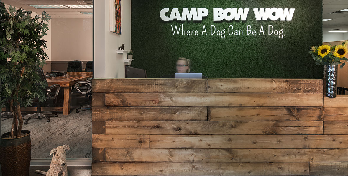 Camp Bow Wow, a commercial interior design project from Elsy