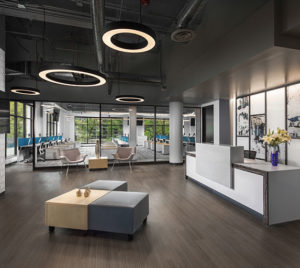 Solidifi, an Elsy Studios Commercial Interior Design Project in Denver, Colorado